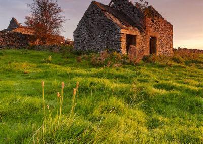 Field barn at sunrise