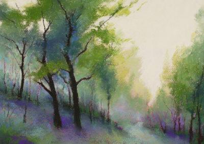 1383 Gillfield Woods, Morning