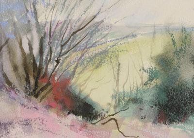 1446 Broad Carr (sketchbook image)