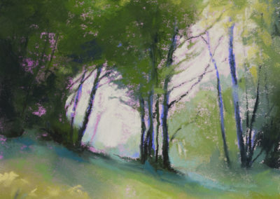 1451 Holmesfield Wood