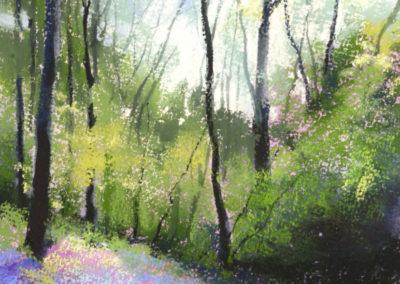 1455 Wildwood Spring, Gillfield