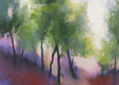 1462 Holmesfield Wood