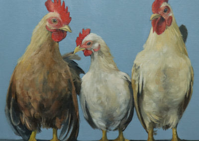 Chickens in a Row