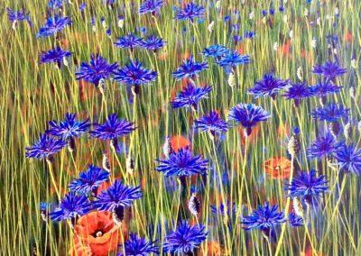 cornflowers-floral-art