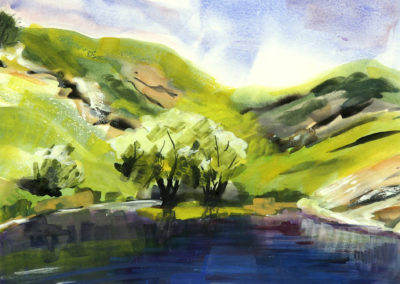 Dovedale water 48
